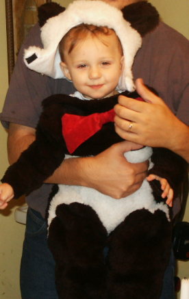 panda-suit